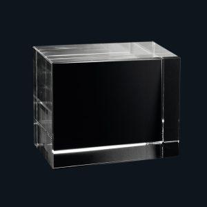 680723_2D-Glasblock_55x45x30_quer